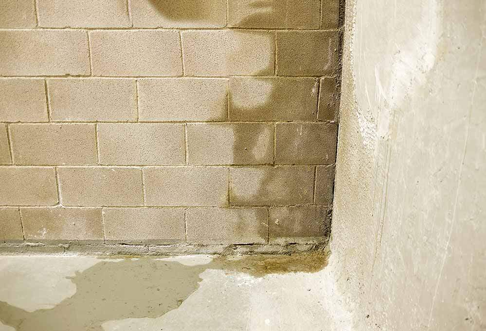 basement leak home inspection